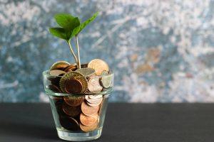 money tree and funding